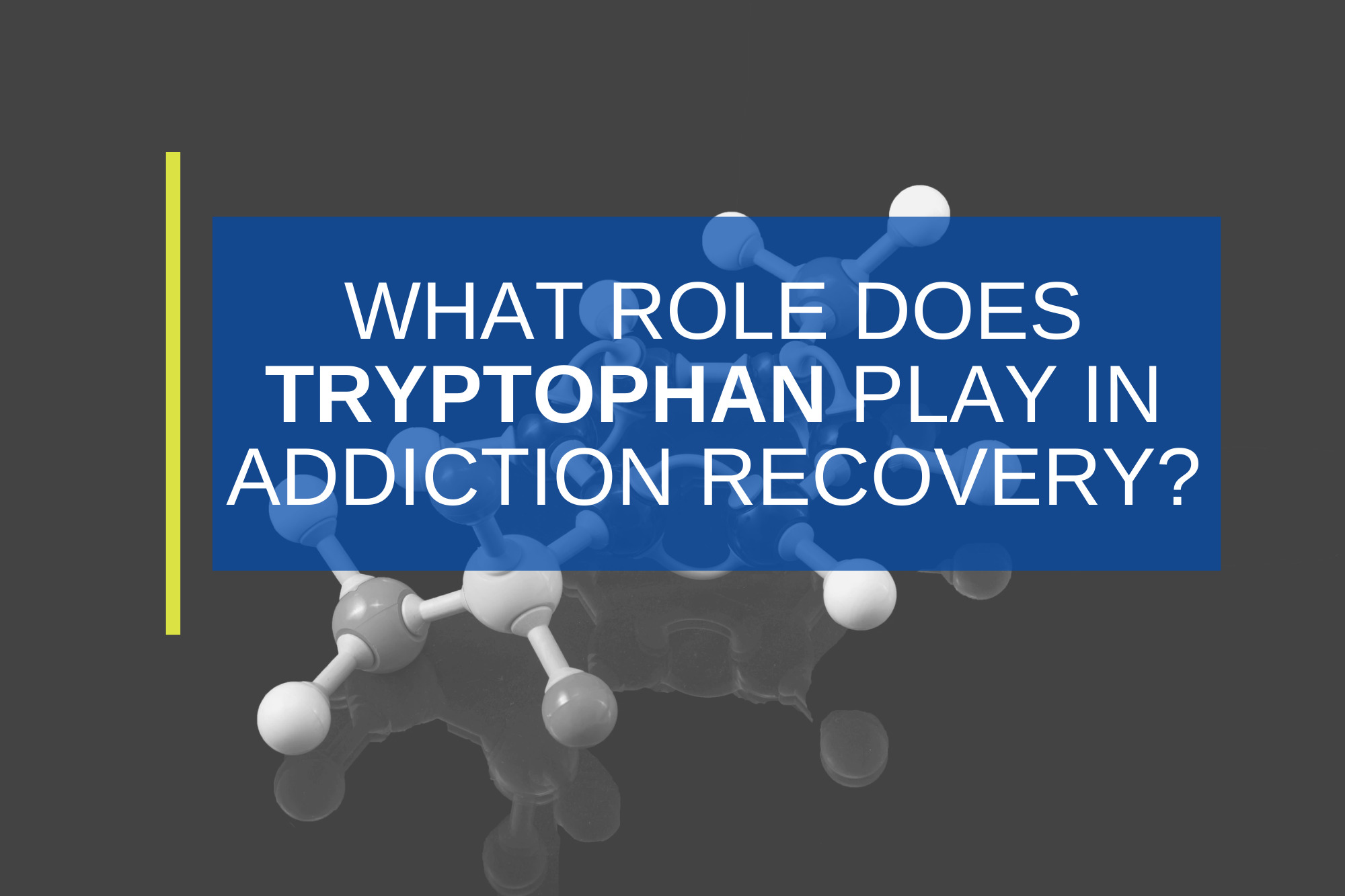 What is Tryptophan & How Does It Impact Substance Use Recovery?